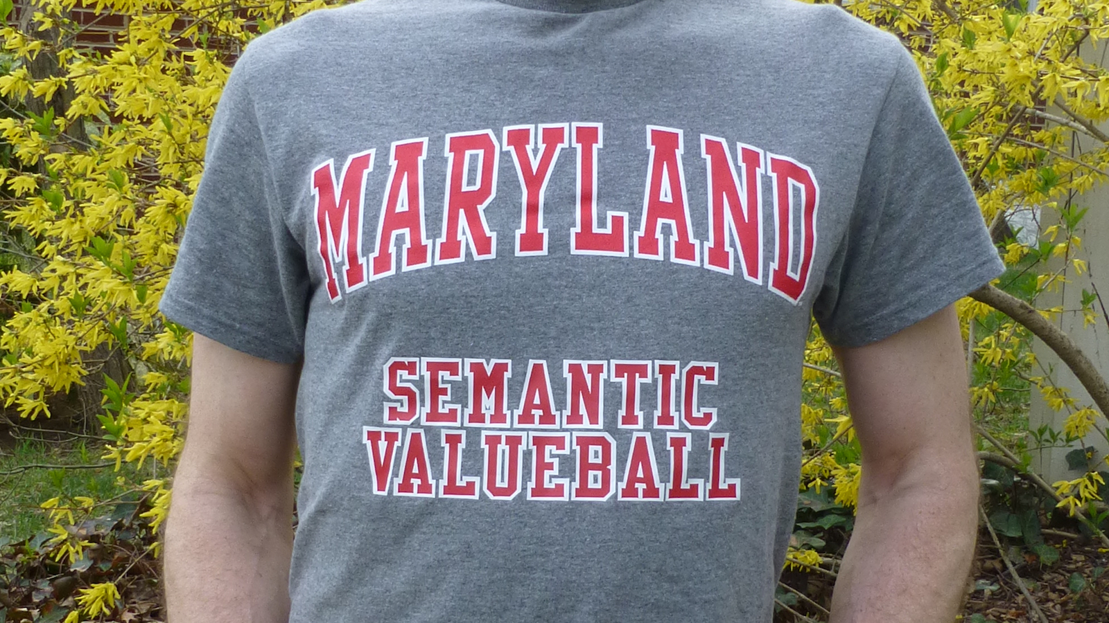 "The torso of a man wearing a t-shirt that says ""Maryland Semantic Valueball"""